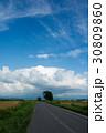 一本道 空 畑の写真 30809860