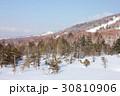 雪晴れに穏やかな冬の長野県志賀高原スキー場 30810906