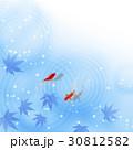 暑中見舞い 和柄 残暑見舞い 金魚 30812582