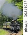 新緑の真岡鉄道SL 30814027