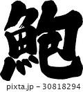 蚫 筆文字 ベクターのイラスト 30818294