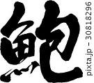 蚫 筆文字 ベクターのイラスト 30818296