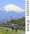 富士山の麓で乗馬体験 30820300