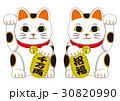招き猫 30820990