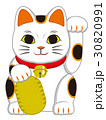 招き猫 30820991