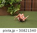 寄木(やどりぎ) 30821340