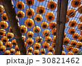 台湾 かき カキの写真 30821462