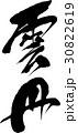 雲丹 筆文字 文字のイラスト 30822619