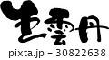 生雲丹 筆文字 文字のイラスト 30822638