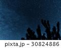 星 樹木 樹の写真 30824886