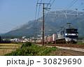 EF210-133コンテナ貨物列車 30829690