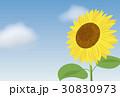 ひまわりの暑中見舞いテンプレート 30830973