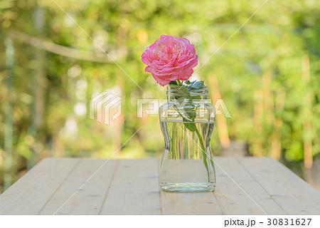 Pink rose in glass jar on wooden tableの写真素材 [30831627] - PIXTA