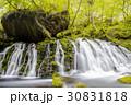 滝 元滝 緑の写真 30831818