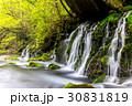 滝 元滝 水の写真 30831819