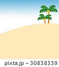 ヤシの木 30838339
