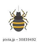 害虫 害獣シリーズ 30839492