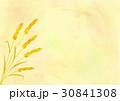 小麦 30841308