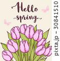 フラワー 花 チューリップのイラスト 30841510