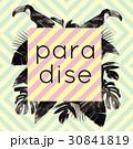 パラダイス 楽園 植物のイラスト 30841819