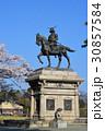 伊達政宗 桜 春の写真 30857584