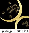 和の素材 和の背景 和柄 30859311