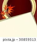 和の素材 和の背景 和柄 紅葉 30859313