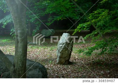 日本庭園の景色 30859407