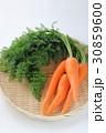 葉付きニンジン 葉付き 野菜の写真 30859600