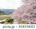 賀茂川の春 30859683