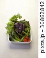 健康食品 ヌキ 切り抜きの写真 30862842