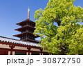 大阪・四天王寺の五重塔 30872750