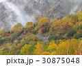 栂池自然園 霧 紅葉の写真 30875048