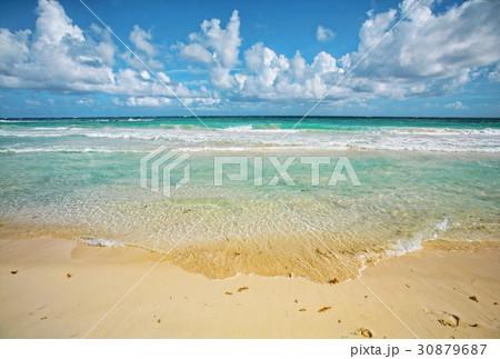 beach 30879687