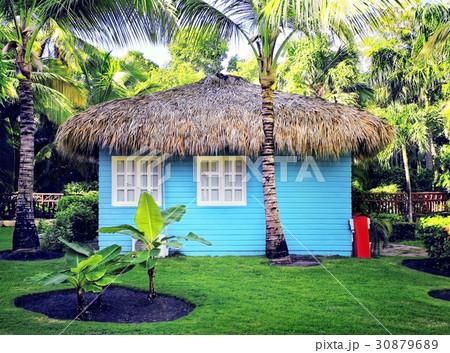 blue house 30879689