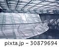 interior 30879694