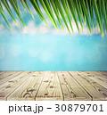 wooden planks 30879701