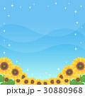 青空 夏 ひまわりのイラスト 30880968
