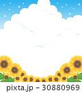 夏 ひまわり 向日葵のイラスト 30880969