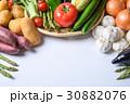 野菜 野菜集合 数種類の写真 30882076