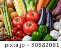 野菜 野菜集合 数種類の写真 30882081