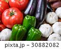 野菜 野菜集合 数種類の写真 30882082