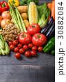野菜 30882084