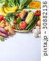 野菜 野菜集合 数種類の写真 30882136