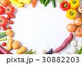 野菜 野菜集合 種類の写真 30882203