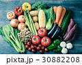 野菜 野菜集合 数種類の写真 30882208