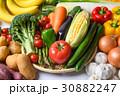 野菜 30882247