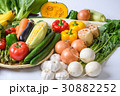 野菜 野菜集合 数種類の写真 30882252