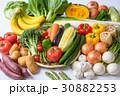 野菜 30882253