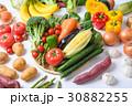 野菜 野菜集合 数種類の写真 30882255